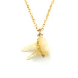 tooth_necklace_1